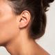 Bijoux d'oreilles Pipe