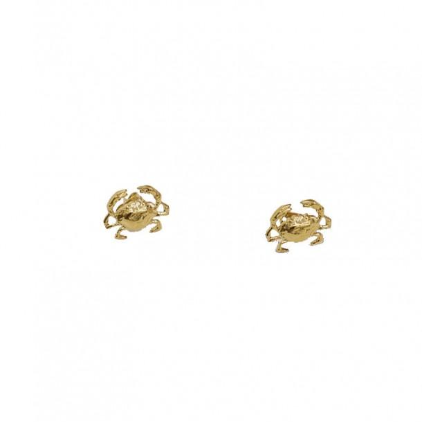 Puces d'oreilles petits crabes
