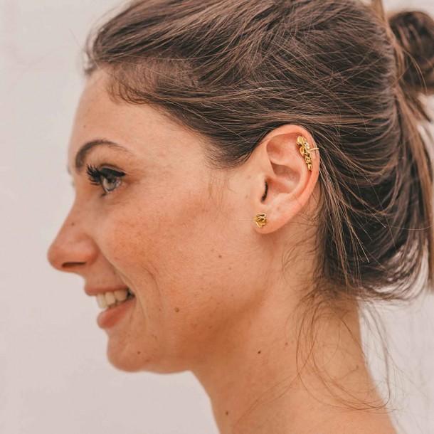 Puces d'oreilles Pursette